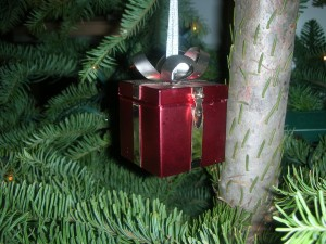 Santa Mouse Present